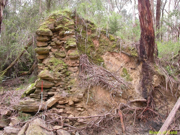 Eatons Dam, Creswick State Forest